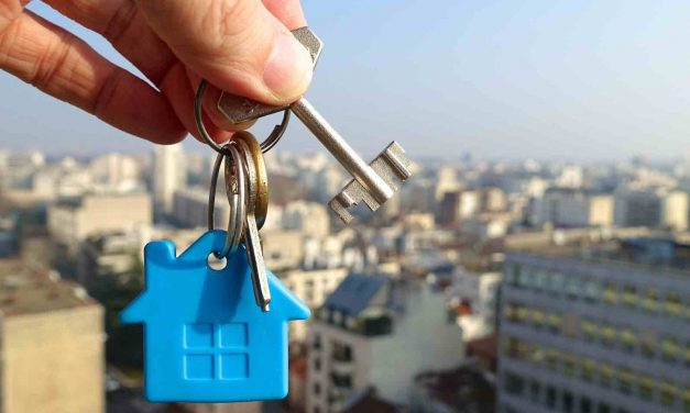 7 things you need to become a successful property developer
