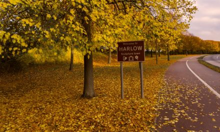 Harlow in Essex leads the way on 10-year house price growth