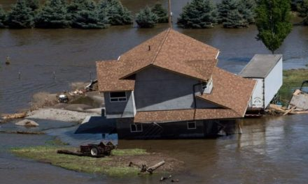 How to Repair Flood Damage In Your Property