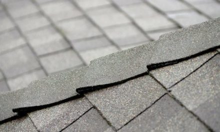 Tile Roof vs. Shingle: Which Type of Roof is Best for Your Home