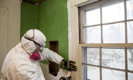 Reasons Why Asbestos Removal is Imperative