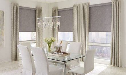 Roller Shades: Unobstructed View for Small or Large Windows