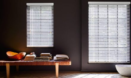 Window Blinds vs. Shades: Which One Suits Your Style and Purpose?