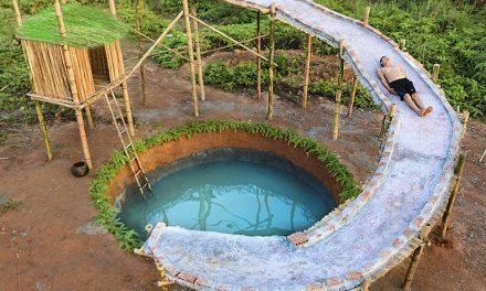 Building A Swimming Pool From Scratch