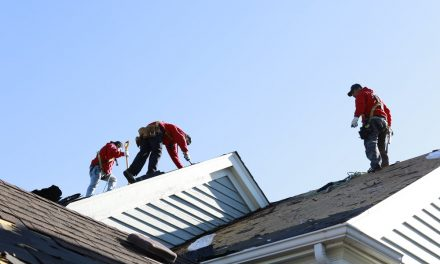 Reasons to Hire a Professional Roofing Company
