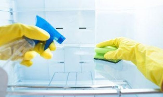 The Professional's Guide to Kitchen Cleaning