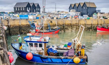 Whitstable the best seaside area to move to