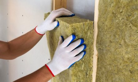 Eight in 10 plan 'green' home improvements in the next 12 months