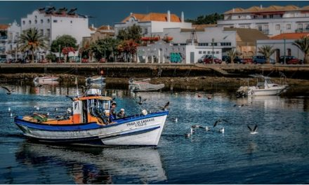 Webinar – Portugal's investment potential and more on Golden Visas