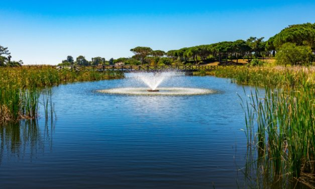 Revealed: how Quinta do Lago's USPs have served it well during Covid